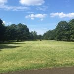 ゴルフ場のような野川公園の写真
