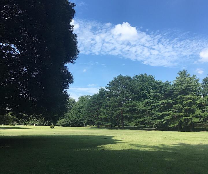 野川公園の写真