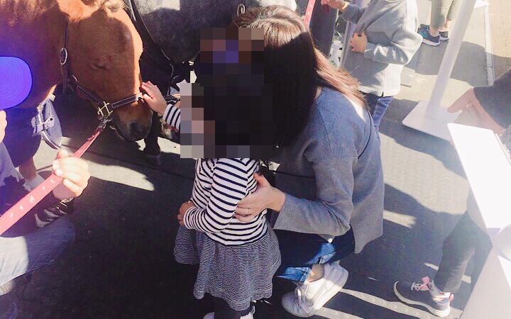 子どもが馬の顔を撫でている様子