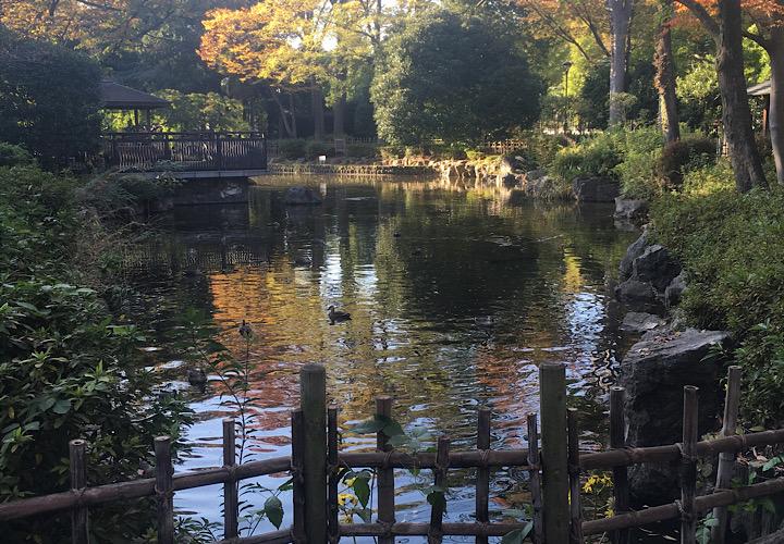 東京競馬場内にある日本庭園