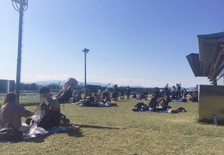 日吉が丘公園の芝生広場