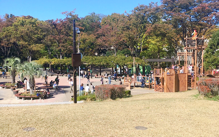 土曜日の日吉が丘公園の様子