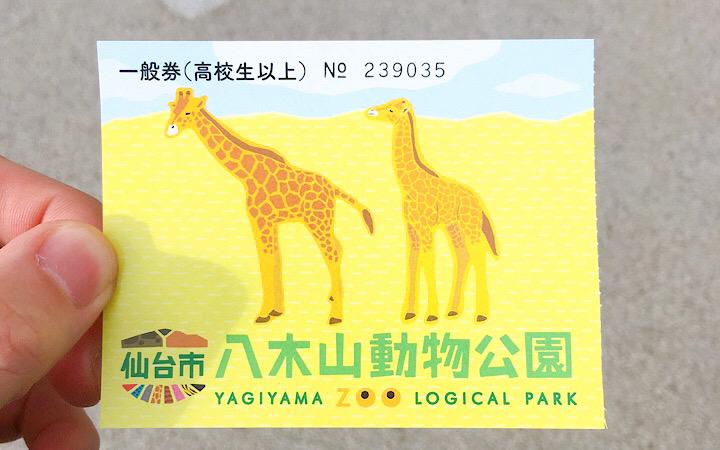 八木山動物公園のチケット