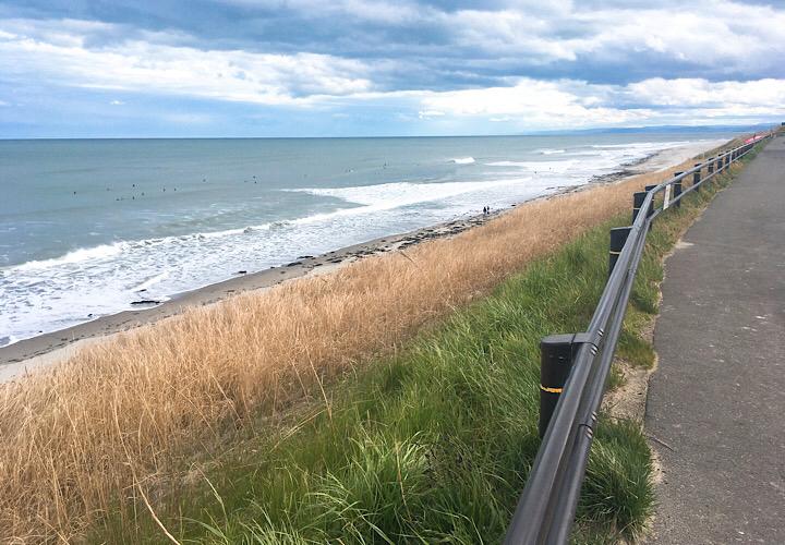 向洋海浜公園から見える海