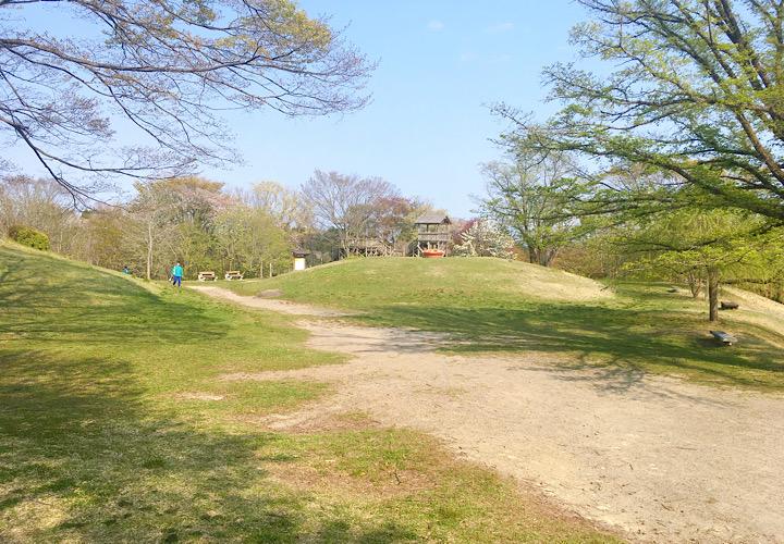 県民の森の広場