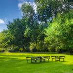 今いる場所から近い公園を探す方法は?近くの公園の探し方を解説