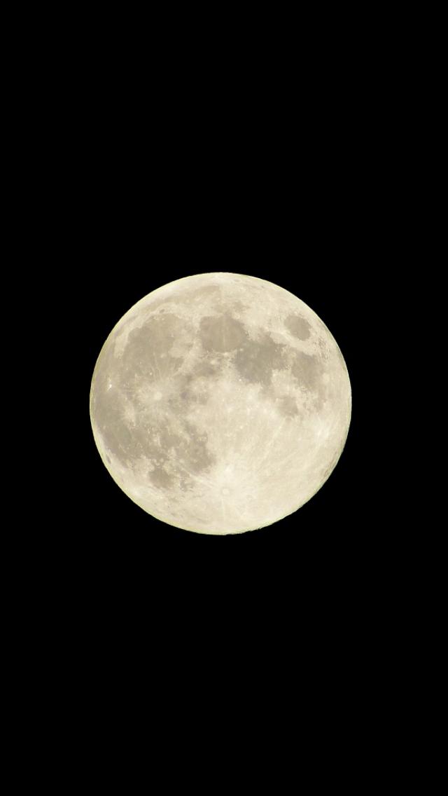 撮影した満月